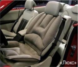 Автомобильная массажная система Lux Pasther